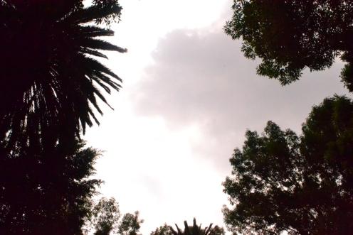 El hermoso cielo en Coyoacán
