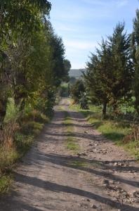 Rancho. Querétaro