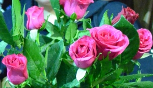 Rosas para celebrar el alta de Rebeca.