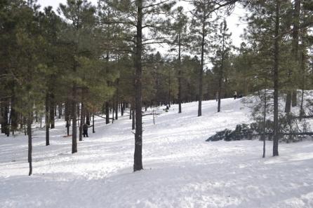 Flagstaff (6)