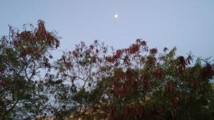 Amanecer y Parque Kabah (2)