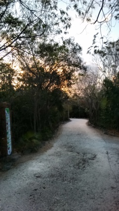 Amanece Parque Kabah Cancún, Quintana Roo