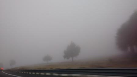 Niebla. Carretera Veracruz.