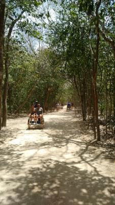 Tricitaxi Cobá, zona arqueológica Quintana Roo