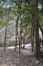 Cobá, zona arqueológica Quintana Roo