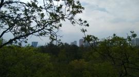 Chapultepec junio 2017 (182)