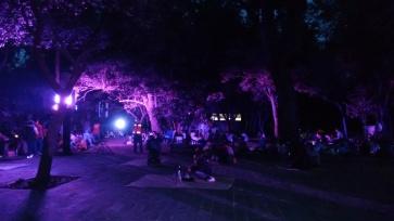 picnic nocturno junio 2017 (7)