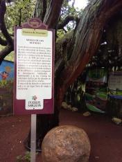 Museo de los duendes Huasca de Ocampo, Hidalgo