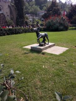 Xoloitzcuincle Museo Dolores Olmedo