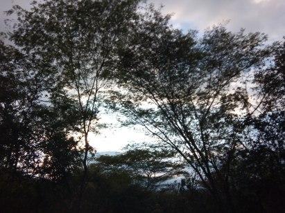 carretera a Xilitla 1