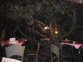 restaurante xilitla